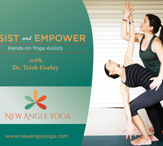 Hands-on Assists Yoga Training
